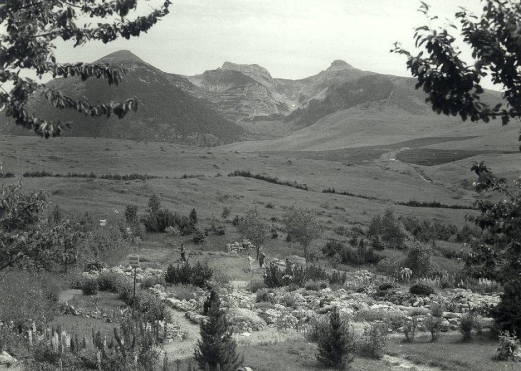 Panoramica (1958)
