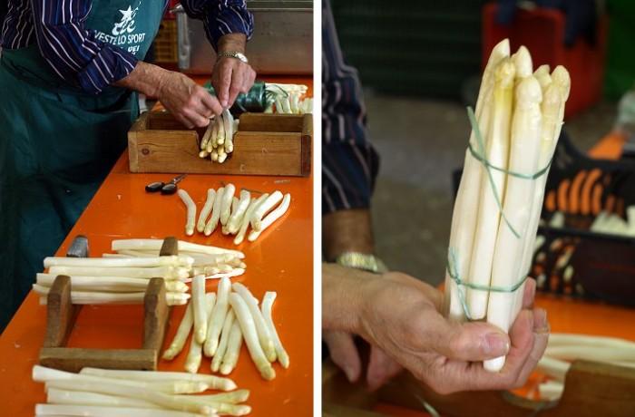 la misura giusta dell'asparago bianco di zambana si fa a mano
