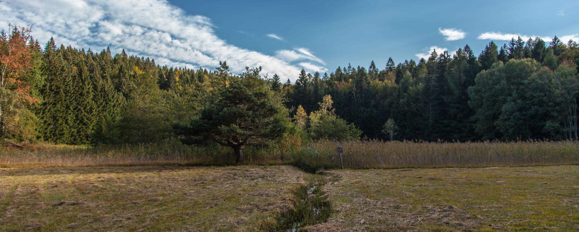 Trekking antichi laghi, foto di Alessandro Cristofoletti