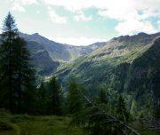 panorama_lariceti