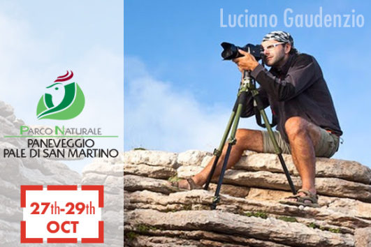 Photographic trekking at the Paneveggio Pale di San Martino Natural Park, 27-29 October 2017