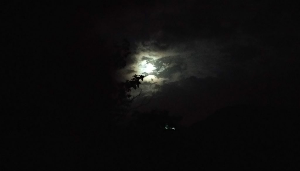 luna_mariocche