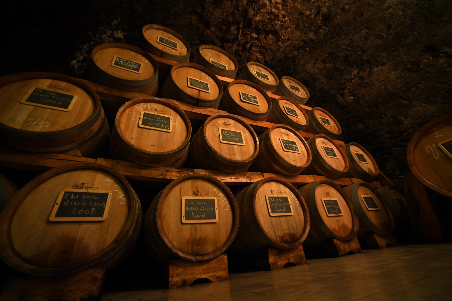 Il vino visto da vicino: alla scoperta della Nosiola