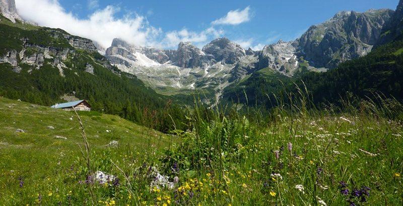 Nel Parco naturale Adamello Brenta, 31 maggio - 1 giugno